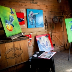 geraldine-summer-fete-gallery-4
